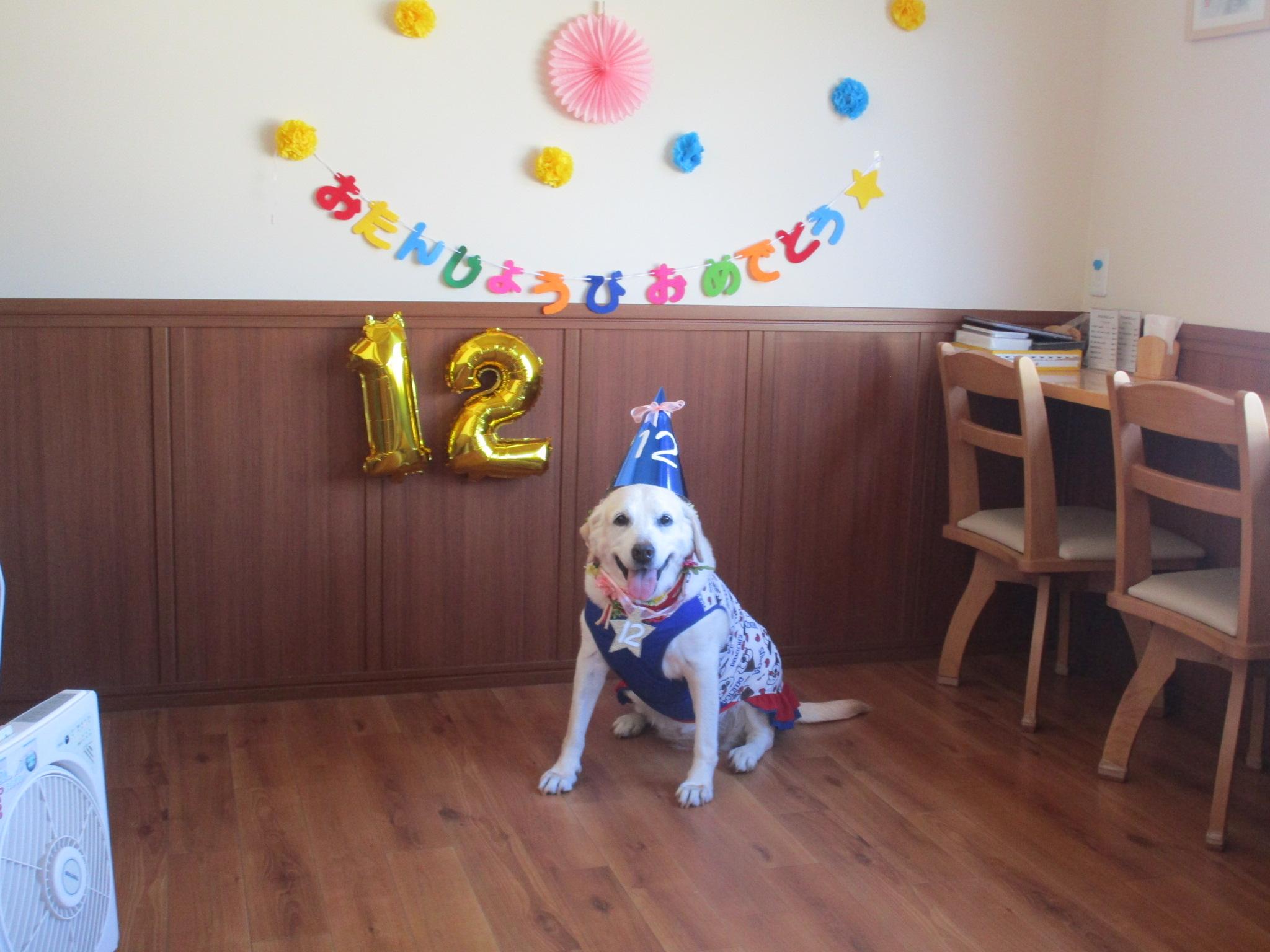 愛娘12才の誕生日